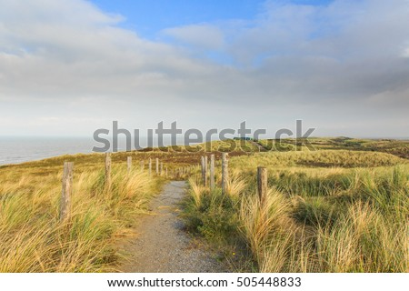 Access road to a lookout in the dunes along the Dutch North Sea coast near the coastal town of Noordwijk. The vegetation consists of Dune thorns  and marram grass.