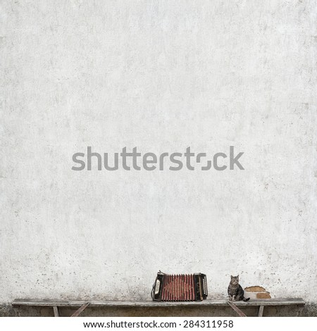 accordion and tabby cat sitting on the bench near the huge white wall - stock photo