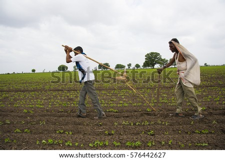 ACHALPUR, MAHARASHTRA, INDIA, 7 JULY 2015 : Farmers and workers are plowing agricultural field in traditional way where a plow is attached to self as a bull.