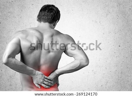 Ache, adult, anatomy. - stock photo