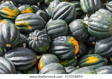 Acorn squash on display at the farmers market - stock photo