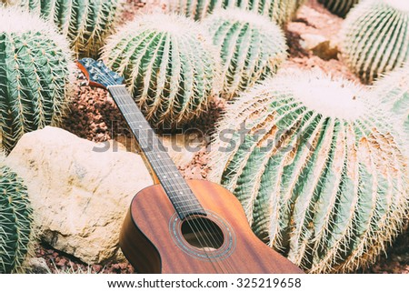 Acoustic guitar leaning on rocks and cactus.Vintage color toned style - stock photo