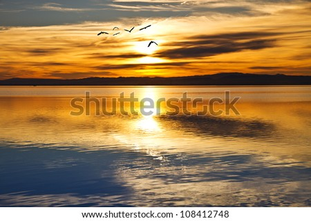 Across the lake - stock photo