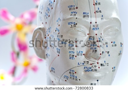 Acupuncture head model - stock photo