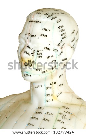 Acupuncture model - stock photo