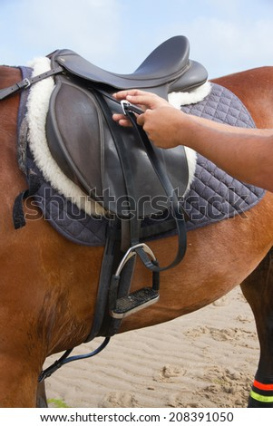 Adjusting the stirrups whilst riding on the beach. - stock photo