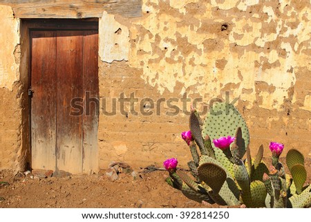 Adobe Wall and Wooden Door with flowering Prickly Pear Cactus - stock photo