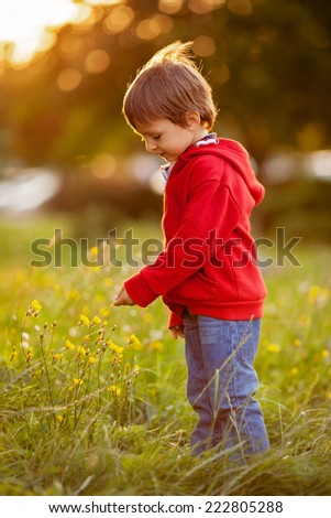 Adorable boy with his teddy friend, sunset time - stock photo