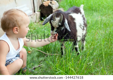 adorable child is cuddling a baby goat - stock photo