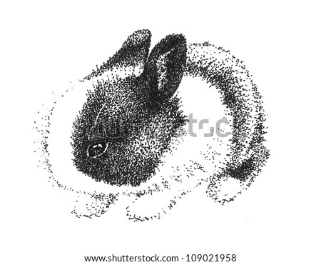 adorable cute bunny rabbit in black and white pen hand drawn sketch, illustration is pointillism art design for Easter pet or children's nature book, clip art is isolated on white background - stock photo