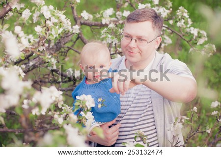 Adorable happy baby girl with father in a beautiful blooming fruit garden with white blossoms on apple trees - stock photo