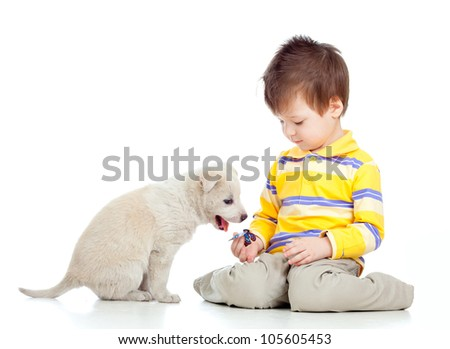 adorable kid boy playing with a puppy