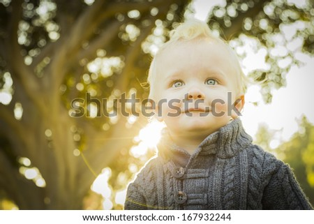 Adorable Little Blonde Baby Boy Outdoors at the Park.  - stock photo