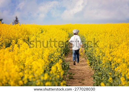 Adorable little boy, running in yellow oilseed rape field, backwards, feeling happy and free - stock photo