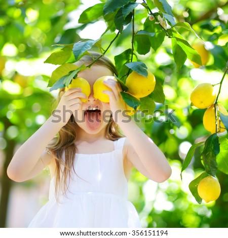 Adorable little girl picking fresh ripe lemons in sunny lemon tree garden in Italy - stock photo