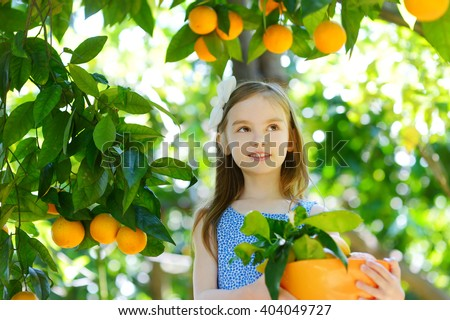 Surprising Orange Tree Stock Photos  People Images  Shutterstock With Great Adorable Little Girl Picking Fresh Ripe Oranges In Sunny Orange Tree Garden  In Italy With Awesome Nymans Gardens Wedding Cost Also Stone Garden Bench Uk In Addition Homebase Garden Ornaments And Allan Gardens Toronto As Well As Garden With Bricks Additionally Farrow And Ball Garden From Shutterstockcom With   Great Orange Tree Stock Photos  People Images  Shutterstock With Awesome Adorable Little Girl Picking Fresh Ripe Oranges In Sunny Orange Tree Garden  In Italy And Surprising Nymans Gardens Wedding Cost Also Stone Garden Bench Uk In Addition Homebase Garden Ornaments From Shutterstockcom