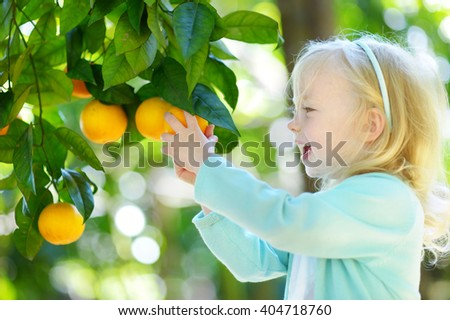 Fascinating Orange Tree Stock Photos  People Images  Shutterstock With Gorgeous Adorable Little Girl Picking Fresh Ripe Oranges In Sunny Orange Tree Garden  In Italy With Attractive Fox In Garden Also Spumoni Gardens Nyc In Addition Live In Gardening Jobs And Plas Newydd Country House And Gardens As Well As Wild Street Covent Garden Additionally Garden Concrete Ornaments From Shutterstockcom With   Gorgeous Orange Tree Stock Photos  People Images  Shutterstock With Attractive Adorable Little Girl Picking Fresh Ripe Oranges In Sunny Orange Tree Garden  In Italy And Fascinating Fox In Garden Also Spumoni Gardens Nyc In Addition Live In Gardening Jobs From Shutterstockcom