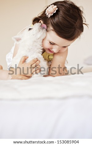 Adorable little girl playing with a Westie puppy - stock photo