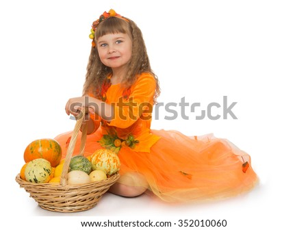 Adorable little girl with long , blonde flowing hair , dressed in a bright orange dress . Girl sitting near wicker basket in which lay pumpkins of different sizes - Isolated on white background