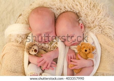 Adorable newborn identical twin baby girls sleeping in a soft basket - stock photo