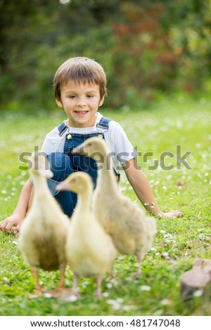 Adorable preschool children, boy brothers, playing with little ducklings in a garden