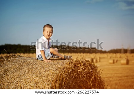 Adorable preschooler boy sitting on a haystack in wheat field on warm and sunny summer day - stock photo