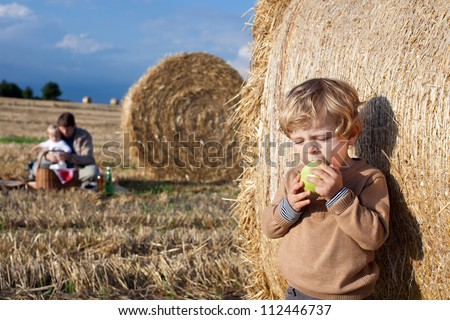 Adorable toddler eating apple on golden field