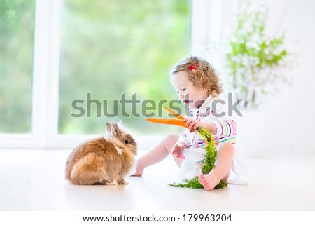 Adorable toddler girl with beautiful curly hair wearing a white dress playing with a real bunny in a sunny living room with a big garden view window sitting on the floor