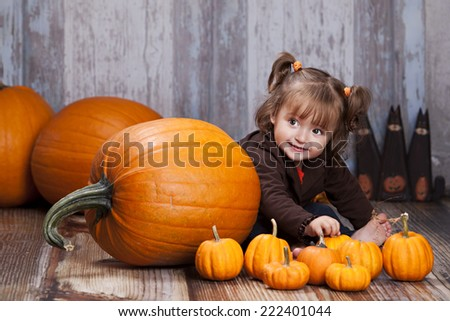 Adorable toddler sitting next to giant pumpkins and other autumn decor.   - stock photo