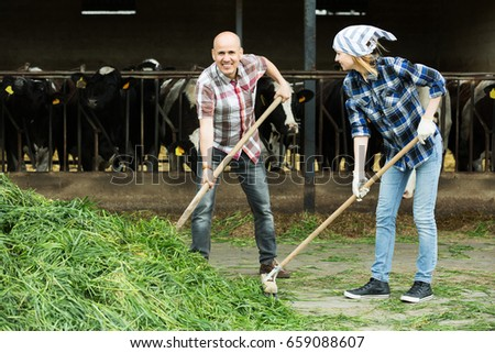 Adult farm employees with pitchforks working in livestock barn