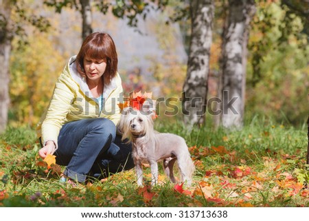 Adult female collects maple leaves with small dog