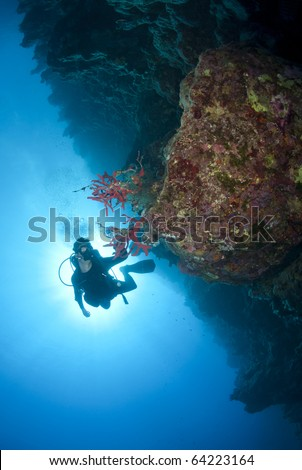 Adult male scuba diver photographing a tropical coral reef. Shark observatory, Ras Mohamed National Park, Red Sea, Egypt.