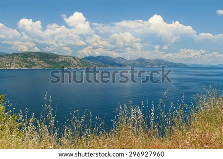 Aegean sea view with tall dry yellow grass at foreground and green mountains and blue cloudy sky at background in Amos Bay, Mugla, Turkey - stock photo