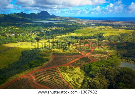 Aerial view fields on Kauai Hawaii. More with keyword Series001A. - stock photo