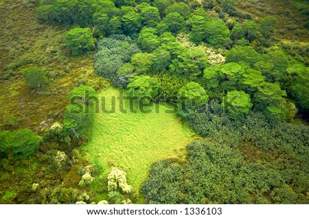 Aerial view oasis on Kauai Hawaii. More with keyword Series001A. - stock photo