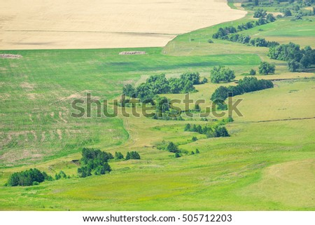 Aerial view of agricultural field and trees