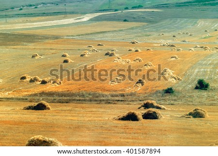 Aerial view of agricultural fields and haystacks. Toned - stock photo