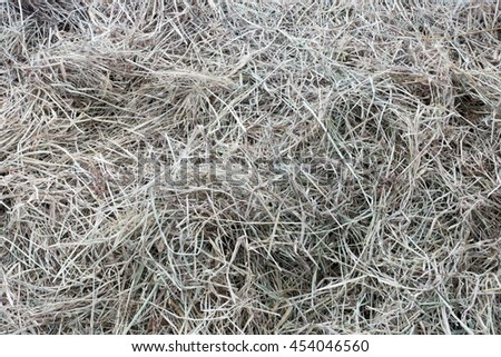 Aerial view of bunch of straw to feed horse. - stock photo