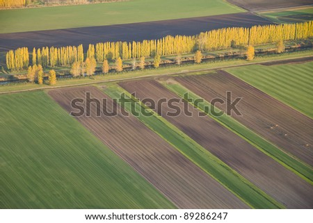 Aerial view of fields and lines of crops and harvested areas - stock photo