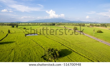 Aerial view of fields in country