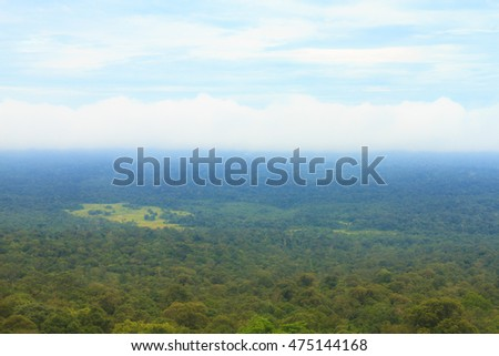 Aerial view of forest at Khao Yai national park (a unesco world heritage site), Thailand.