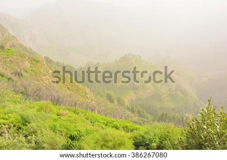 Aerial view of Garajonay National Park under the fog, La Gomera, Spain - stock photo