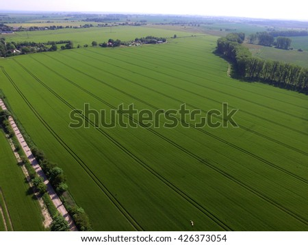 aerial view of green agriculture fields in germany