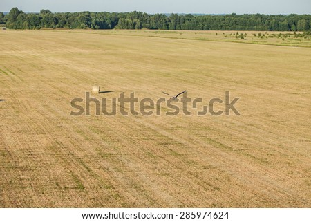 aerial view of hay bales on harvest field in Poland - stock photo