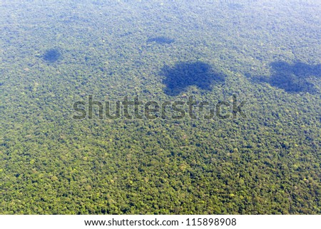 Aerial view of pristine rainforest in the Ecuadorian Amazon - stock photo