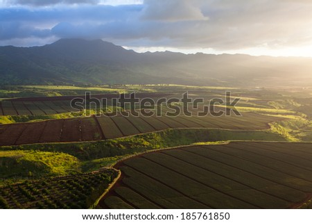 Aerial view of rich green fields of farmland in Hawaii - stock photo