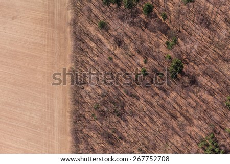 aerial view of spring time forest in Poland - stock photo