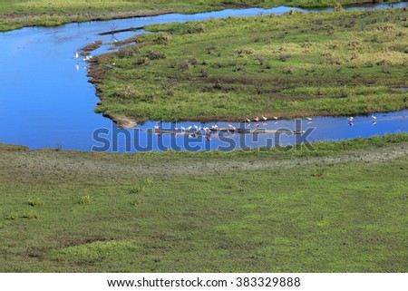 Aerial view of the Everglades and Fish Eating Creek, Florida. - stock photo