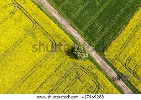 aerial view of  the green harvest fields in Poland - stock photo