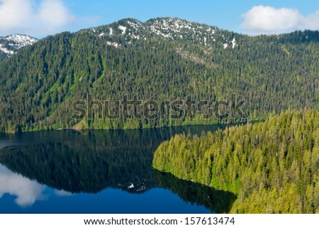 Aerial view of the rainforest in Misty Fjord, near Ketchikan, Alaska - stock photo